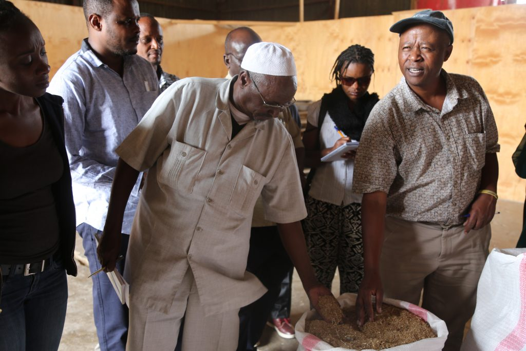 Dr. Gakuo (right) explain to a delegation from Wajir and Mandera counties on the feedlotting technology for fattening and finishing of Livestock