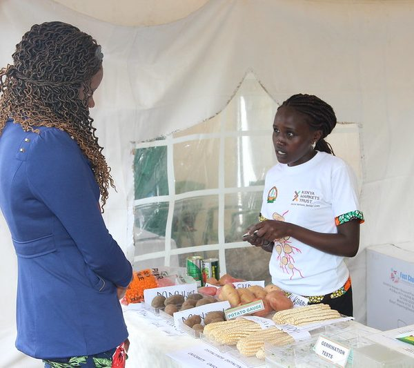 Seed multiplication technolog at Tumaini Farm | market systems development