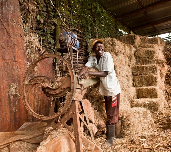 Supporting SMEs in developing countries adapt to climate change through multi-stakeholder partnerships: Kenyan experience